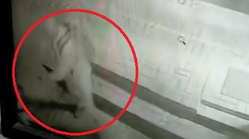 Oślepił gazem psa. Został zatrzymany dzięki monitoringowi